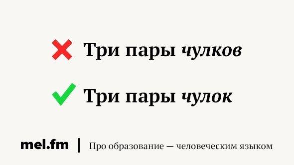 Deklination des Wortes \